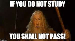 You Shall Not Pass Meme
