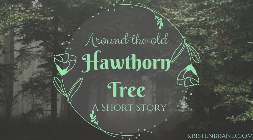 Around the old Hawthorn Tree