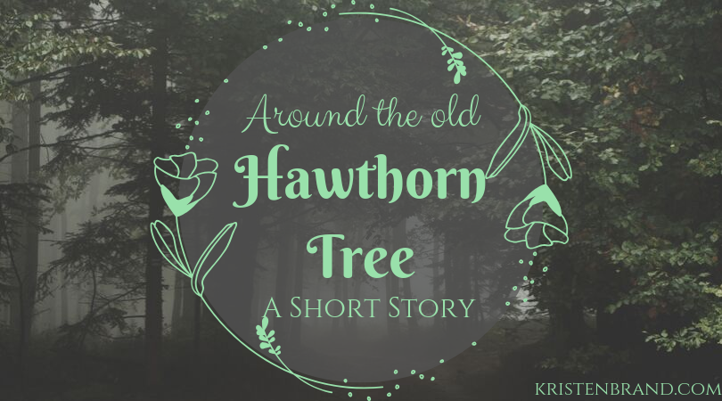 Around the old Hawthorn Tree