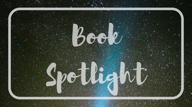 Book Spotlight: Red and Black by Nancy O'Toole Meservier